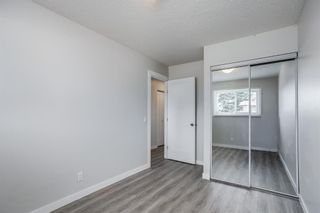 Photo 9: 6109 Maddock Drive NE in Calgary: Marlborough Park Semi Detached for sale : MLS®# A1146297