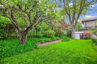 Photo 18: 34 Sanderling Place in Toronto: Banbury-Don Mills House (Bungalow-Raised) for sale (Toronto C13)  : MLS®# C4482488