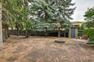 Photo 38: 88 Berkley Rise NW in Calgary: Beddington Heights Detached for sale : MLS®# A1127287