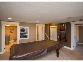 Photo 39: 34 CHAPALA Court SE in Calgary: Chaparral House for sale : MLS®# C4108128