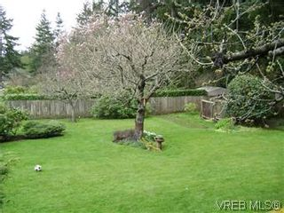 Photo 4: 2505 Arbutus Rd in VICTORIA: SE Cadboro Bay House for sale (Saanich East)  : MLS®# 568551