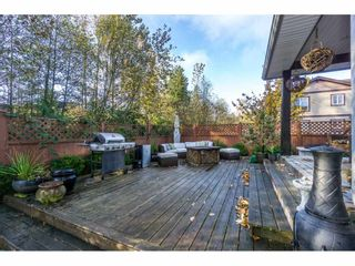 Photo 20: 32650 GREENE Place in Mission: Mission BC House for sale : MLS®# R2221497