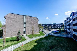 Photo 34: 301 17404 64 Avenue NW in Edmonton: Zone 20 Condo for sale : MLS®# E4245502