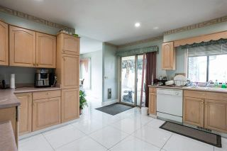 Photo 6: 245 Cornish Road, in Kelowna: Agriculture for sale : MLS®# 10235331