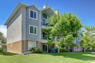 Photo 30: 305 3501 15 Street SW in Calgary: Altadore Apartment for sale : MLS®# A1063257