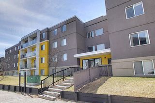 Photo 20: 102 4455A Greenview Drive NE in Calgary: Greenview Apartment for sale : MLS®# A1088042