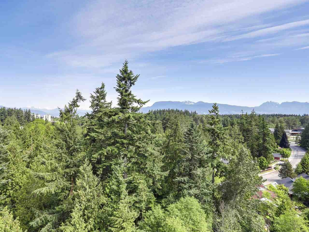 """Photo 16: Photos: 1704 5775 HAMPTON Place in Vancouver: University VW Condo for sale in """"CHATHAM"""" (Vancouver West)  : MLS®# R2196974"""