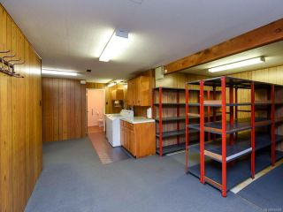 Photo 41: 331 McCarthy St in CAMPBELL RIVER: CR Campbell River Central House for sale (Campbell River)  : MLS®# 838929