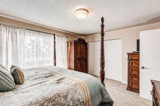 Photo 22: 173 Martinglen Way NE in Calgary: Martindale Detached for sale : MLS®# A1144697