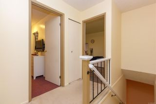 Photo 32: 14 1480 Garnet Rd in : SE Cedar Hill Row/Townhouse for sale (Saanich East)  : MLS®# 862688