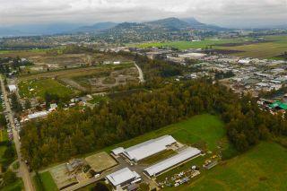 Photo 5: 718 MCKENZIE Road in Abbotsford: Poplar Land for sale : MLS®# R2510205