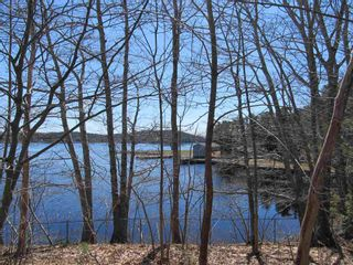 Photo 4: Lot 1 Highway 331 in Conquerall Bank: 405-Lunenburg County Vacant Land for sale (South Shore)  : MLS®# 202107962