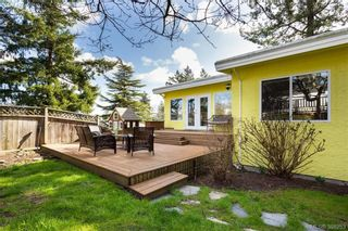 Photo 19: 1108 McBriar Ave in VICTORIA: SE Lake Hill House for sale (Saanich East)  : MLS®# 780264
