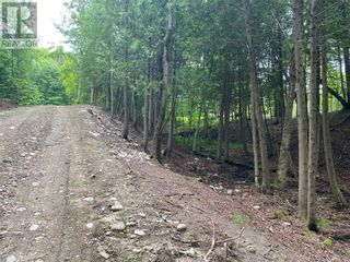 Photo 10: Lot 1 Indian Mountain Lane in Nemi: Vacant Land for sale : MLS®# 2097541