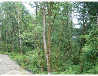 """Photo 9: 53 24185 106B Avenue in Maple_Ridge: Albion 1/2 Duplex for sale in """"TRAILS EDGE"""" (Maple Ridge)  : MLS®# V724664"""