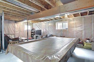 Photo 29: 9519 208 Street in Edmonton: Zone 58 House for sale : MLS®# E4241415