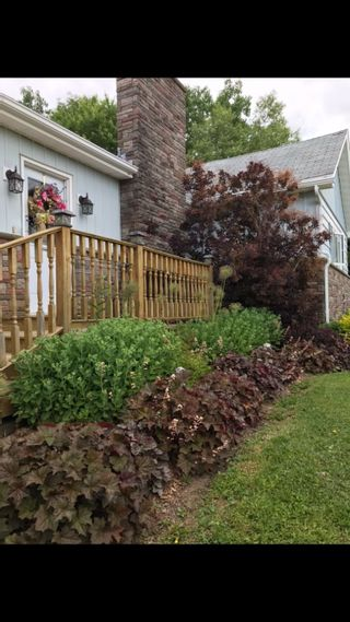 Photo 8: 13 Munroe Ave Ext in Westville Road: 108-Rural Pictou County Residential for sale (Northern Region)  : MLS®# 202103450