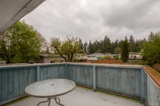 Photo 16: 3669 VINCENT Street in Port Coquitlam: Glenwood PQ House for sale : MLS®# R2057240