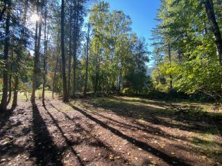 Photo 10: 4665 CRESCENT ROAD in Nelson: Vacant Land for sale : MLS®# 2461363
