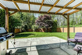 Photo 18: 22892 GILLIS Place in Maple Ridge: East Central House for sale : MLS®# R2060019