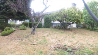 Photo 10: 4336 CARLETON Avenue in Burnaby: Burnaby Hospital House for sale (Burnaby South)  : MLS®# R2305007