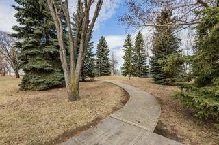 Photo 43: 12002 41 Street in Edmonton: Zone 23 House for sale : MLS®# E4239522
