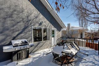 Photo 29: 266 Banister Drive: Okotoks Residential for sale : MLS®# A1070083