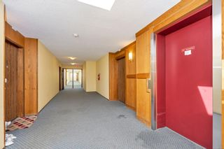 Photo 25: 215 10110 Fifth St in : Si Sidney North-East Condo for sale (Sidney)  : MLS®# 880325