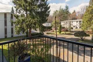 "Photo 18: 43 38177 WESTWAY Avenue in Squamish: Valleycliffe Condo for sale in ""Westway Village"" : MLS®# R2249405"