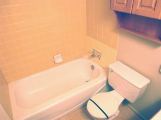 """Photo 12: 210 12096 222 Street in Maple Ridge: West Central Condo for sale in """"CANUCK PLAZA"""" : MLS®# R2531266"""