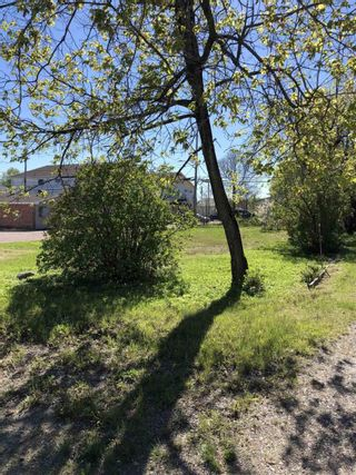 Photo 5: 15 Fifth Street in Balmertown: Vacant Land for sale : MLS®# TB210489