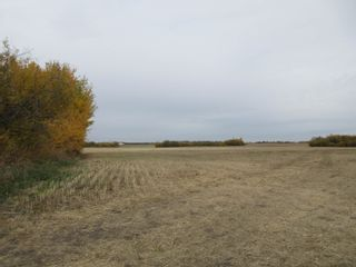 Photo 3: 55101 RR 270: Rural Sturgeon County Rural Land/Vacant Lot for sale : MLS®# E4265205