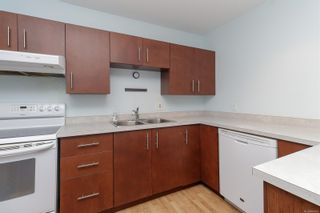 Photo 8: 303 1360 Esquimalt Rd in : Es Esquimalt Condo for sale (Esquimalt)  : MLS®# 887643