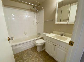 Photo 24: 305 10330 113 Street in Edmonton: Zone 12 Condo for sale : MLS®# E4250079