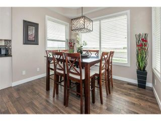 Photo 10: 264 RAINBOW FALLS Way: Chestermere House for sale : MLS®# C4117286