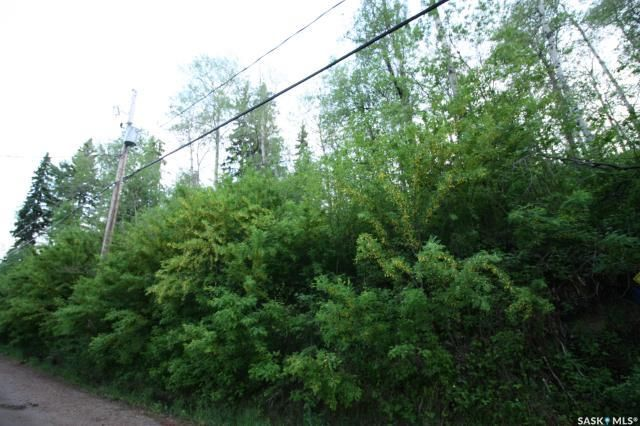 Main Photo: 154 Carwin Park Drive in Emma Lake: Lot/Land for sale : MLS®# SK846951