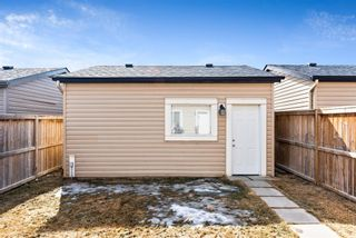 Photo 27: 20 SKYVIEW POINT Heath NE in Calgary: Skyview Ranch Semi Detached for sale : MLS®# A1088927