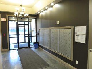 Photo 43: 702 10303 105 Street in Edmonton: Zone 12 Condo for sale : MLS®# E4236167