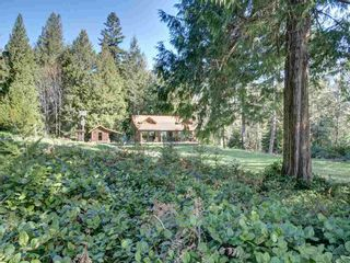 Photo 14: 135 HAIRY ELBOW Road in Seymour: Halfmn Bay Secret Cv Redroofs House for sale (Sunshine Coast)  : MLS®# R2556718