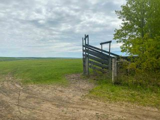 Photo 29: 15166 BUICK CREEK Road in Fort St. John: Fort St. John - Rural W 100th Agri-Business for sale (Fort St. John (Zone 60))  : MLS®# C8030416