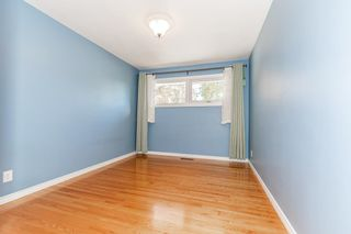 Photo 28: 9213 162 Street in Edmonton: Zone 22 House for sale : MLS®# E4264714