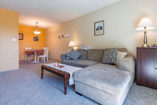 Photo 10: 312 178 Back Rd in : CV Courtenay East Condo for sale (Comox Valley)  : MLS®# 855720
