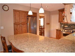 "Photo 8: 785 CITADEL Drive in Port Coquitlam: Citadel PQ House for sale in ""CITADEL"" : MLS®# V1018367"