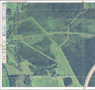 Photo 3: NE 13-54 Range Road 130: Niton Junction Rural Land for sale (Edson)  : MLS®# 32591