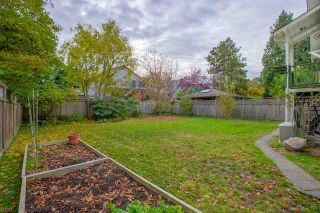 Photo 16: 3112 W 5TH Avenue in Vancouver: Kitsilano House for sale (Vancouver West)  : MLS®# R2263388