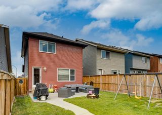 Photo 42: 481 Evanston Drive NW in Calgary: Evanston Detached for sale : MLS®# A1126574