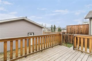 Photo 21: 226 SILVER SPRINGS Way NW: Airdrie Detached for sale : MLS®# C4302847