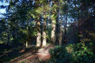 Photo 15: 240 MARINERS Way: Mayne Island Land for sale (Islands-Van. & Gulf)  : MLS®# R2520914