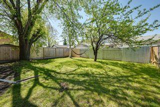 Photo 42: 10223 171A Avenue in Edmonton: Zone 27 House for sale : MLS®# E4255487