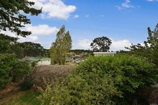 Photo 38: 2536 ASQUITH St in : Vi Oaklands House for sale (Victoria)  : MLS®# 883783